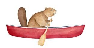 Röd kanot för brun bäverteckenblanko som ror med träskoveln royaltyfri illustrationer