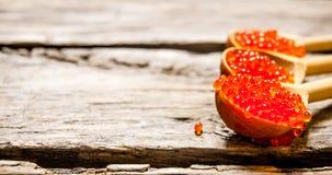 Röd kaviar Fotografering för Bildbyråer