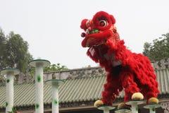Röd kinesisk traditionell kineskvarter för festival för beröm för lejondanskapacitet royaltyfri foto