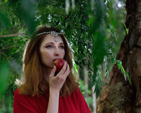 Röd klänningdam i djungel Royaltyfri Foto