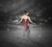 Röd klänningsnöstorm. Royaltyfri Fotografi