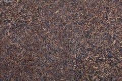 Röd komposttäckning Fotografering för Bildbyråer