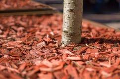 Röd komposttäckning Royaltyfria Bilder