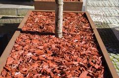 Röd komposttäckning som används för trädgårds- dekorera Fotografering för Bildbyråer
