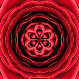 Röd koncentrisk blommamitt. Mandala Kaleidoscopic design Royaltyfria Foton