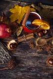 Röd kopp av varmt funderat vin i höst bland sidor fotografering för bildbyråer
