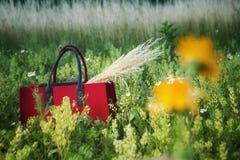 Röd korg med gras på ett fält arkivbilder