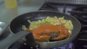 Röd krabba och italiensk pasta som lagar mat i stekpanna på ugnbrand på kök Kock som strilar smaktillsats på italiensk pasta stock video