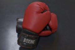 Röd läderboxninghandske royaltyfri foto