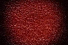 Röd lädertexturbakgrund, slut upp Royaltyfria Bilder