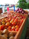 Röd lök för tomatpotatis Royaltyfri Foto