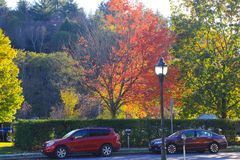 Röd lönn Nedgång i Vermont Royaltyfria Bilder