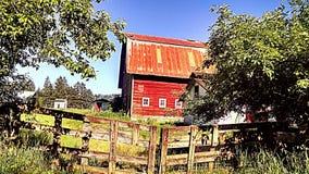 Röd ladugård Royaltyfri Foto