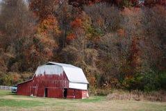 Röd ladugård med det vita taket i hösten i lantliga Indiana Arkivbilder