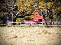 Röd ladugård med hästen royaltyfri bild