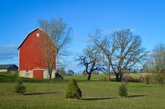 Röd ladugård med kala träd i Wisconsin royaltyfri fotografi