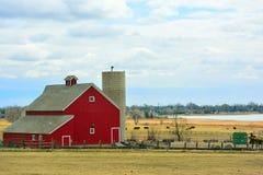 Röd ladugård med kor och hem och Condominiu för Encroaching förorts- Royaltyfri Foto