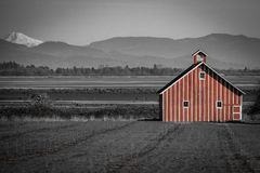 Röd ladugård med svartvita landskapbergsikter på Fern Ridge Reservoir arkivbilder