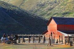 Röd ladugård och fållor Arkivfoton