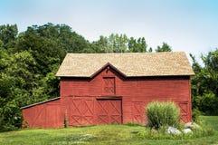 Röd ladugård och pampasgräs Arkivbild