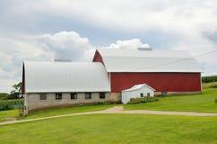 Röd ladugård på en mejerilantgård Arkivbild