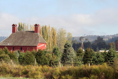 Röd ladugård, träd och väderkvarn Arkivbild