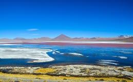 Röd lagun, Eduardo Avaroa Andean Fauna National reserv, Bolivia Royaltyfri Foto