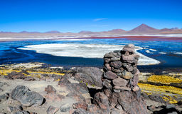 Röd lagun, Eduardo Avaroa Andean Fauna National reserv, Bolivia Arkivfoto
