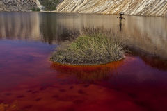 Röd Lake Fotografering för Bildbyråer