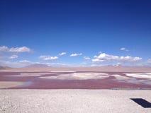Röd Lake Royaltyfri Bild
