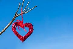 Röd landsgnäggandehjärta som hänger från trädfilial mot blå himmel; Dag för valentin` s och förälskelsebegrepp med kopieringsutry royaltyfria foton