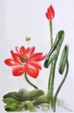 Röd Lotus vattenfärgmålning vektor illustrationer