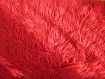 Röd lurvig matta Royaltyfri Fotografi