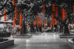 Röd lyktahängning på träd Arkivbild