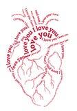 Röd människahjärta, vektor Arkivfoton