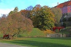 Röd målad bro i parkera Royaltyfri Foto