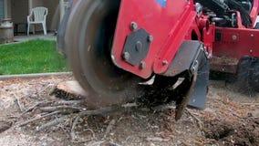 Röd maskin som tar bort stubbeplugghästar, som den gör framsteg i ultrarapid stock video