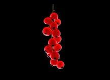 Röd mogen saftig vinbär på svart bakgrund Söta sommarbär Ny röd vinbär Ljus röd vinbär för närbild Royaltyfri Bild
