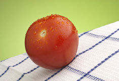 röd mogen tomat arkivfoto