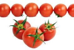 röd mogen tomat för grupp Arkivfoto