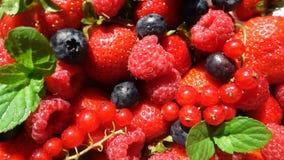Röd mogen trädgårds- jordgubbe och blåbär, rotation av bär på den vita tabellen, härlig bakgrund, video ögla arkivfilmer
