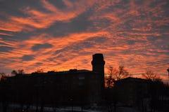 Röd morgon Arkivbilder