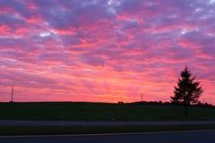 Röd morgon arkivfoton