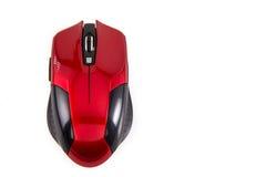 Röd mus på vit bakgrund Arkivfoton