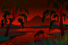 Röd natt Royaltyfri Bild