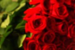 Röd naturlig rosbukett Arkivfoto