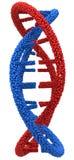 Röd och blå DNAmolekylcloseup Fotografering för Bildbyråer