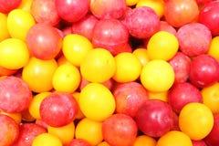 Röd och gul mirabelle som bakgrund Arkivbild