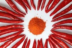 Röd och jordpaprika för gräsplan, från hemträdgården royaltyfri fotografi