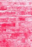 Röd och rosa bakgrund för textute för tegelstenvägg Arkivfoton